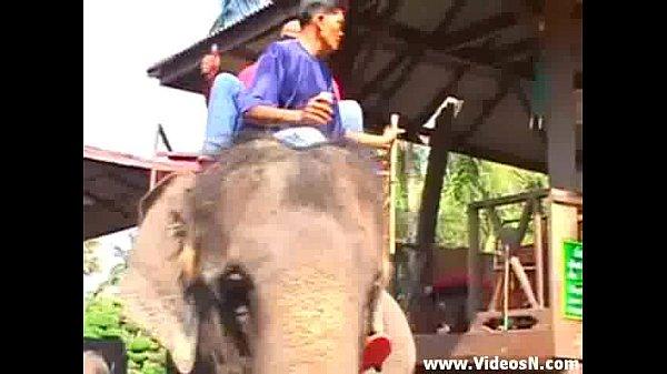 หนังโป๊ไทยเก่า ตำนานที่เลาขานกันเป็นเวลานาน ว่าหนังโป้ไทยแม่งเงี่ยนสุดๆ